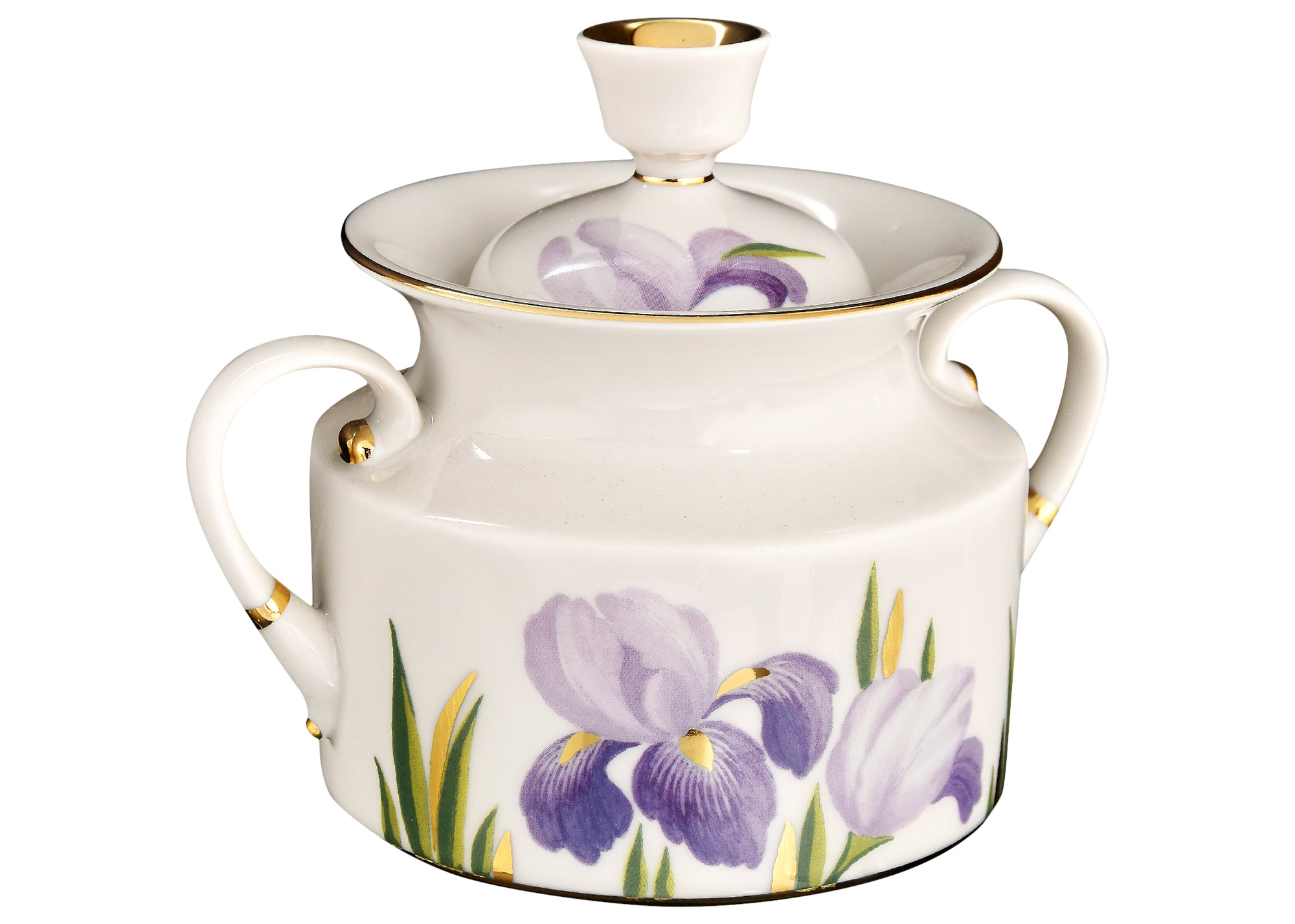 Buy Irises 20pc. Tea Set for 6 at GoldenCockerel.com